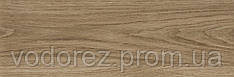 Плитка для пола Fusta Roble 20x60