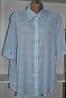 Летняя женская блузка большого размера, фото 1