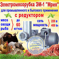 """Электромясорубка с редуктором ЕМ-1 """"Мрия"""", производительность - 60 кг/час"""