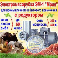 """Электромясорубка с редуктором ЕМ-1 """"Мрия"""", производительность - 60 кг/час, фото 1"""