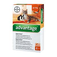 Bayer ADVANTAGE 40 - средство от блох у кошек и кроликов весом до 4 кг, 1пипетка