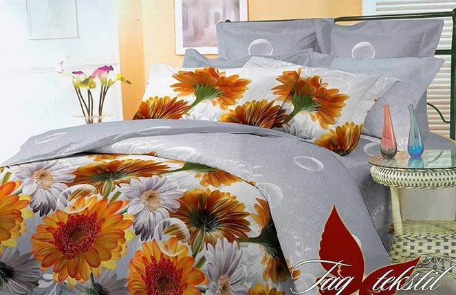 Евро комплект постельного белья с Цветами, Поликоттон, фото 2