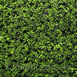 Штучна трава HATKO EXA 15мм; 18мм; 20мм multisport/Искусственная трава HATKO EXA 15мм; 18мм; 20мм multisport