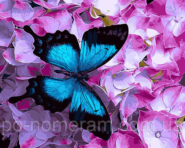 Картина по номерам бабочка