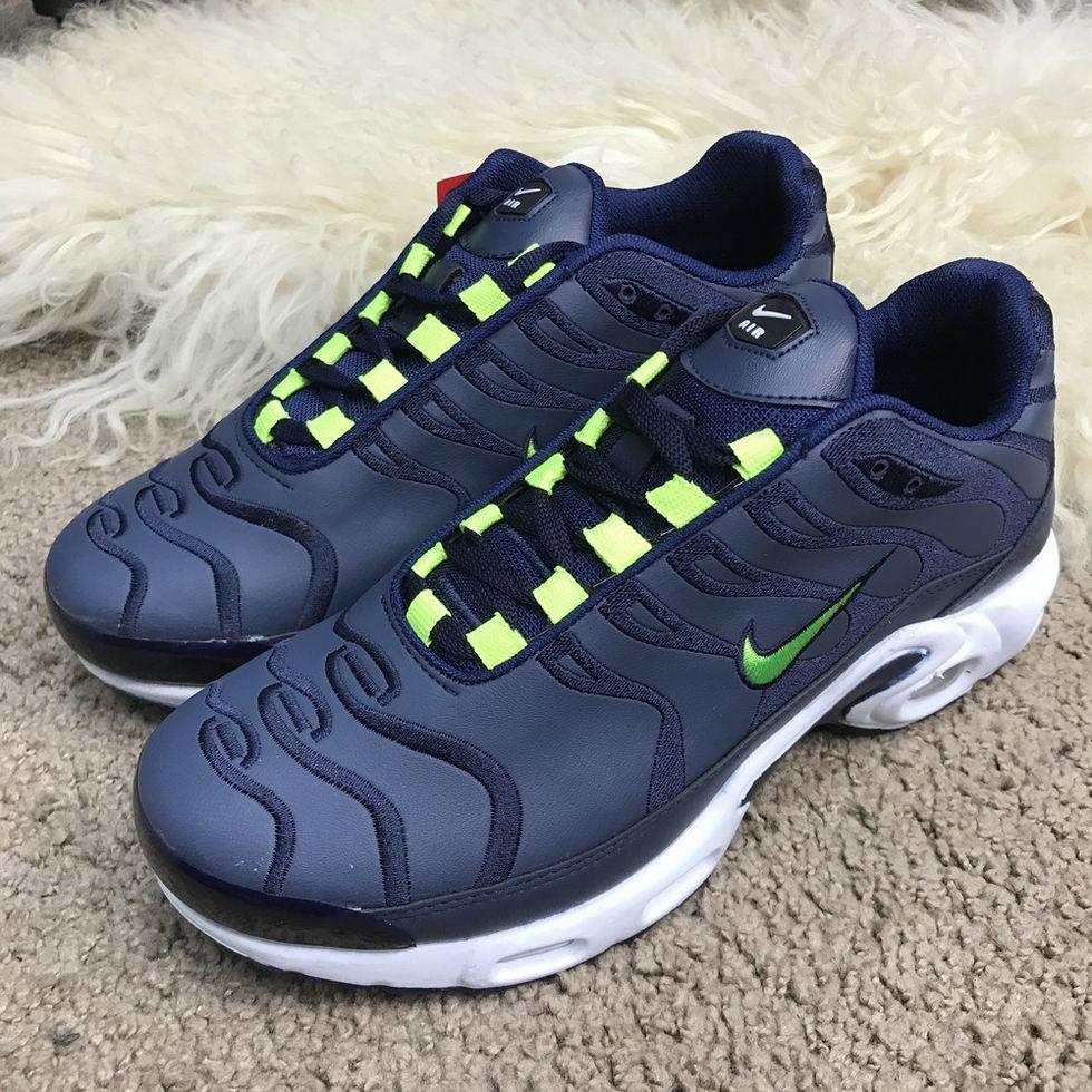 Кроссовки Nike Air Max Tn Plus Blue/Green