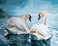 Картины по Номерам 40x50 см. Благородные лебеди