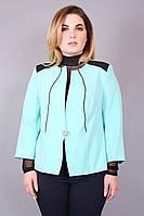 Пиджак большого размера Кант, (3 цв), пиджак женский, пиджак батал, дропшиппинг