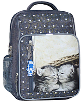 Школьный рюкзак Bagland для девочки серый