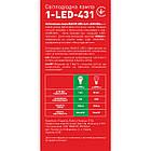 Светодиодная лампа LED Maxus G45 4W теплый свет E14 1-LED-431, фото 4