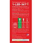 Лампа LED MAXUS  5W теплый свет G45 Е14 220V 1-LED MAXUS -367 3000K, фото 3