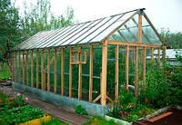 Какую теплицу выбрать: стойкий каркас и надежное покрытие для хорошего урожая