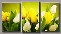 Картина модульная HolstArt Желтые тюльпаны 5 55*100см арт.HAT-192