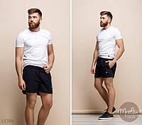 Мужские шорты РР модель 1082