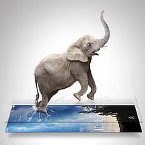 SoftCurvedEdgeтемныйстеклянныйэкранный экран для Samsung GalaxyA82018 1TopShop, фото 3