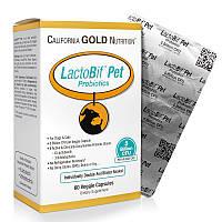 California Gold Nutrition, Пробиотики LactoBif Pet, 5 миллиардов КОЕ, 60 овощных капсул, фото 1