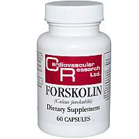 Форсколин, Cardiovascular Research Ltd., 60 капсул