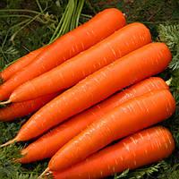 Egrow 200Pcs / Сумка Органическая морковь Семена Сад Семена питательных растений из овощных семян