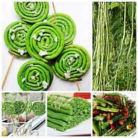 Egrow 20Pcs / Pack Vigna Sinensis Семена Сад Фарм Посадка Овощная Зеленая длинная фасоль Семена