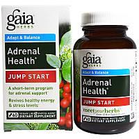 Gaia Herbs, Adrenal Health, Jump Start, 60 веганских жидких фитокапсул