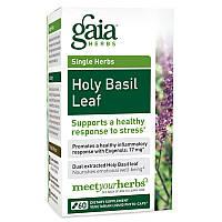 Базилик священный, Holy Basil Leaf, Gaia Herbs, 60 фито-капсул