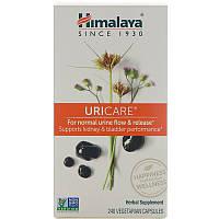 Поддержка почек, UriCare, Himalaya Herbal Healthcare, 240 капсул