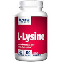 Лизин против герпеса, Jarrow Formulas, L-Lysine, 500 мг, 100 капсул