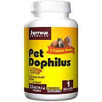 Пробиотики  для животных, Pet Dophilus, Jarrow Formulas, 70,5 г.