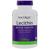 Лецитин, Soya Lecithin, Natrol, 1200 мг, 120 капсул