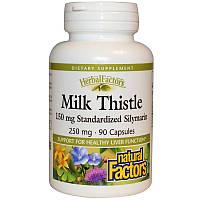 Расторопша (Milk Thistle), Natural Factors, 250 мг, 90 капсул