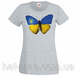 Метелик сіра