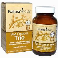 NaturaNectar, Абсолютно натуральный пчелиный прополис - трио, 60 вегетарианских капсул