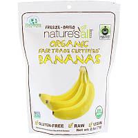 Сушеные бананы, Organic Banana, Nature's All, 71 г