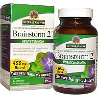 Nature's Answer, Brainstorm 2, комбинация трав, 450 мг, 90 вегетарианских капсул