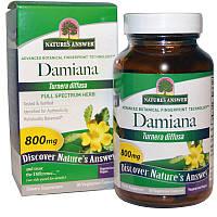 Nature's Answer, Лист дамианы, 800 мг, 90 растительных капсул