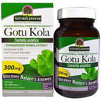 Готу кола (Gotu Kola, Herb Extract), Nature's Answer, 60 капсул