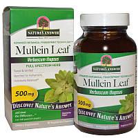 Nature's Answer, Лист коровяка, 500 мг, 90 растительных капсул