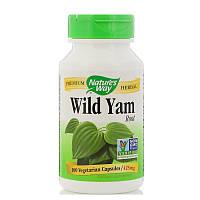 Дикий ямс, Wild Yam Root, Nature's Way, 425 мг, 100 капсул