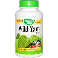 Дикий ямс, Wild Yam Root, Nature's Way, 425 мг, 180 капсул