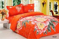 Комплект постельного белья 200*220 Економ Trust  La Vele