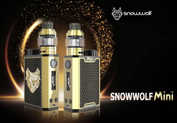 Snowwolf Mini 100W box mod - назвали мини, а по факту...