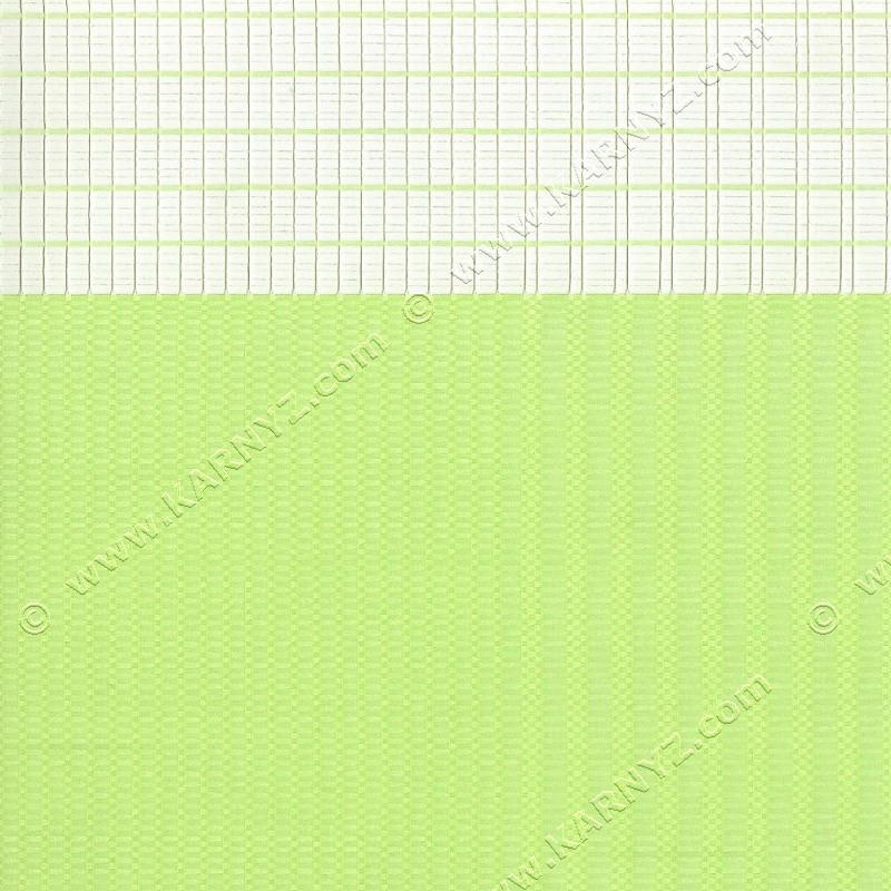 Рулонные шторы День-Ночь Рейл A-683 салатовый