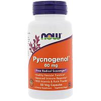 Пикногенол, Pycnogenol, Now Foods, 60 мг, 50 капсул, фото 1