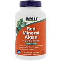 Красные водоросли, Red Mineral Algae, Now Foods, 180 капсул