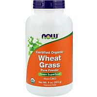 Пророщенная пшеница, пырей, Wheat Grass, Now Foods, 255 грамм