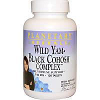 Дикий ямс, Wild Yam, Planetary Herbals, 740 мг, 120 таблеток