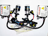 Ксенон Bosch H11 HID Xenon 6000k, фото 3