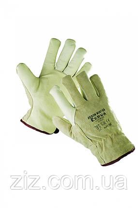 ЧАПЛЯ WINTER Утеплені шкіряні рукавички, фото 2