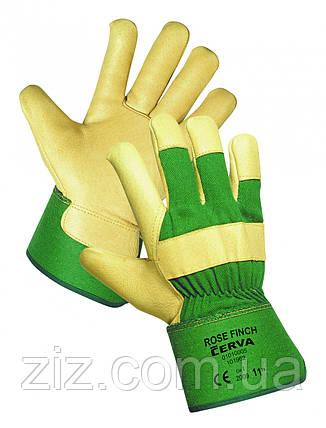 ROSE FINCH комбіновані рукавички Утеплені, фото 2