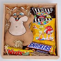 """Подарочный набор """"Белка сладкоежка"""" (набор сладостей) Оригинальный подарок для ребёнка, подруги, друзей"""
