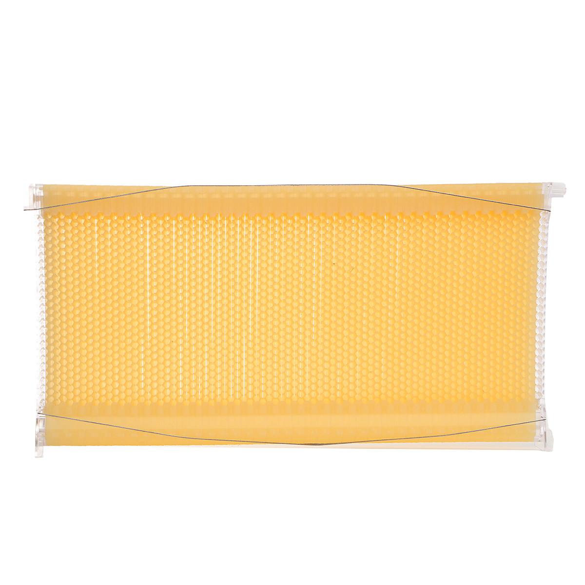 1Pcs Пчелиная рама Auto Honey Hive Beehive Рамки Фурнитура Пчелиные рамы Пищевой пластик 1TopShop